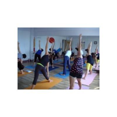 郑州瑜伽教练培训,郑州产后修复瑜伽,河南瑜伽教练培训