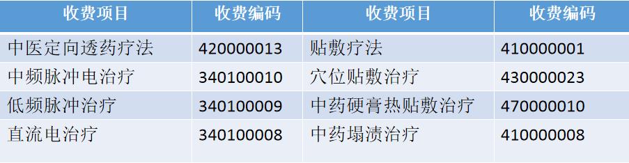中医定向透药治疗系统收费编码